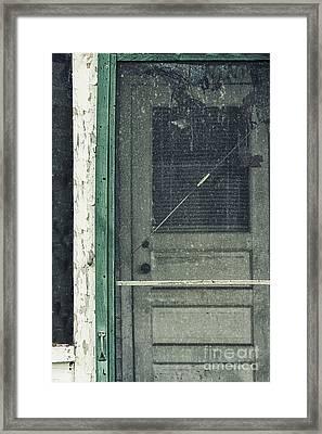 Screen Door Framed Print by Margie Hurwich