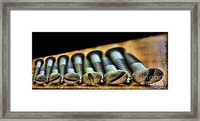Screws All Lined Up 2 Framed Print by Debbie Portwood