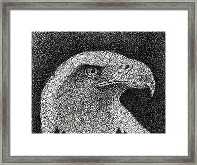 Scribble Eagle Framed Print by Nathan Shegrud