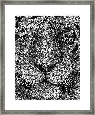 Scribble Tiger Framed Print by Nathan Shegrud
