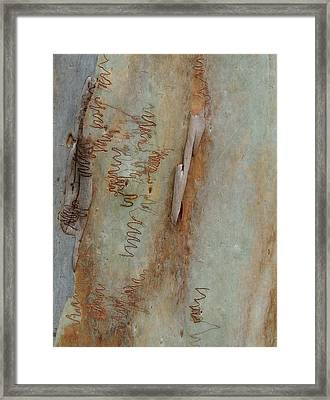 Scribbled Abstract Framed Print