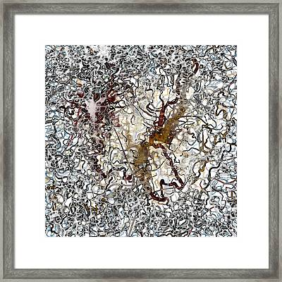 Scribbles On Blobs Framed Print by Constance Krejci