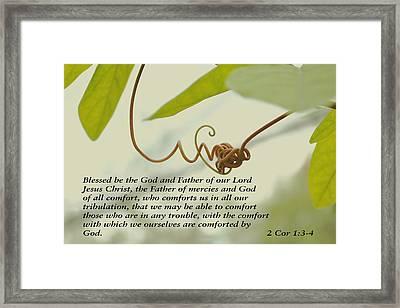 Scriptures Of Comfort 1 Framed Print