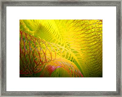Galaxy E Framed Print