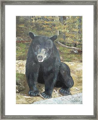 Framed Print featuring the painting Scruffy Again by Jan Dappen