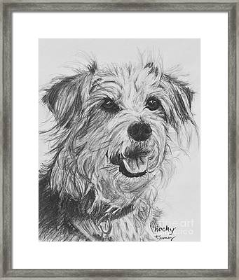 Scruffy Terrier Dog Drawing Framed Print