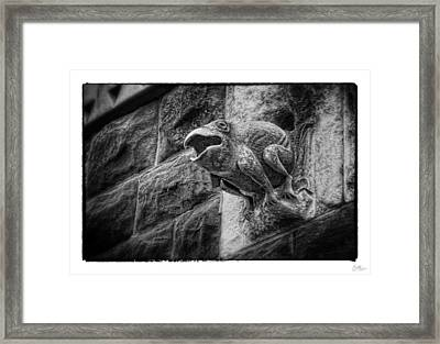 Sculpted Frog - Art Unexpected Framed Print by Tom Mc Nemar