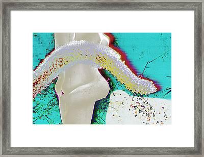 Sculpture Big Sur Framed Print