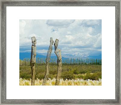 Sculpture In The Andes Framed Print