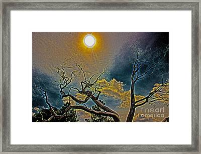 Sculpture In The Sun Framed Print