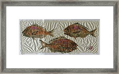 Scup On Rice Paper Framed Print by Jeffrey Canha