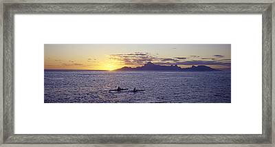 Sea At Sunset, Moorea, Tahiti, Society Framed Print by Panoramic Images