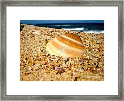Sea Beyond The Shell Framed Print