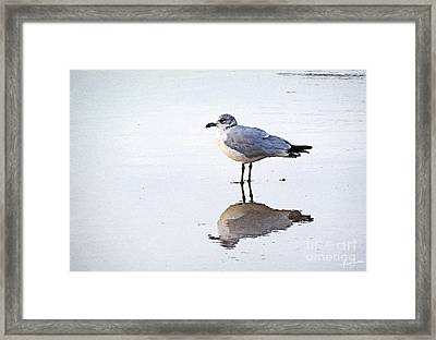 Sea Birds No.1 Framed Print