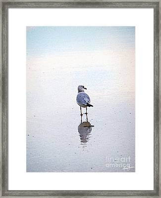 Sea Birds No.3 Framed Print