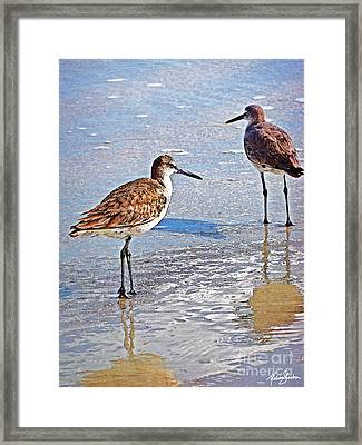 Sea Birds No.4 Framed Print