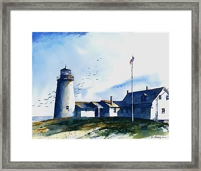 Sea Birds - Pemaquid Lighthouse Framed Print