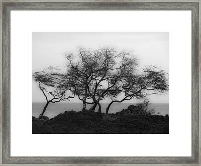 Framed Print featuring the photograph Sea Breeze 1 by Jim Snyder