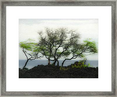 Framed Print featuring the photograph Sea Breeze 2 by Jim Snyder