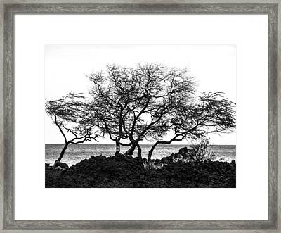 Framed Print featuring the photograph Sea Breeze 3 by Jim Snyder
