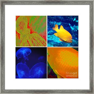 Sea Creatures Collage Framed Print