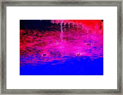 Having A Sea Dream As Far As I Can See  Framed Print by Hilde Widerberg