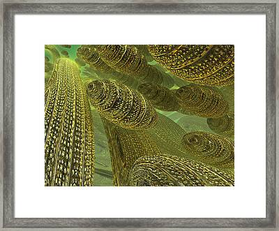 Framed Print featuring the digital art Sea Eggs by Melissa Messick
