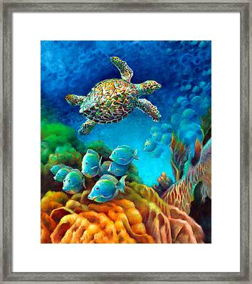 Sea Escape IIi - Hawksbill Gemstone Turtle Framed Print by Nancy Tilles