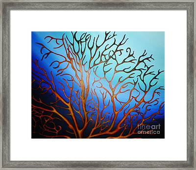 Sea Fan In Backlight Framed Print