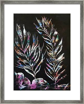 Sea Ferns Framed Print