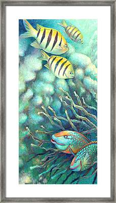 Sea Folk I - Sergeant Majors Framed Print by Nancy Tilles