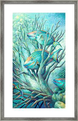 Sea Folk II - Parrot Fish Framed Print by Nancy Tilles