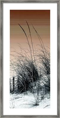 Sea Grass 4 Framed Print by H Scott Cushing