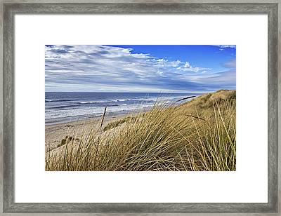 Sea Grass And Sand Dunes Framed Print