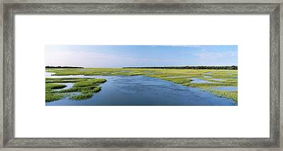 Sea Grass In The Sea, Atlantic Coast Framed Print by Panoramic Images