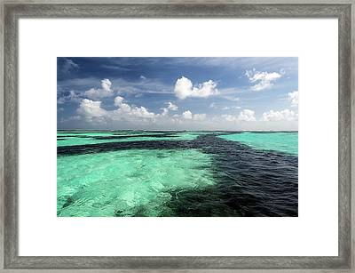 Sea Grass Meadows In The St Joseph Atoll Framed Print by Peter Chadwick