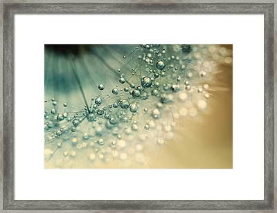Sea Green Sparkles Framed Print by Sharon Johnstone