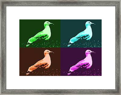 Framed Print featuring the photograph Sea Gulls 4  by Al Fritz