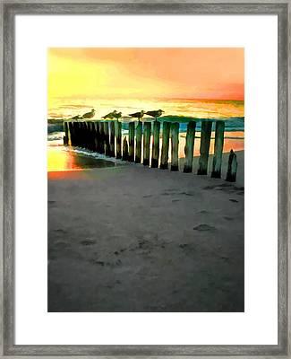 Sea Gulls On Pilings At Sunset Framed Print