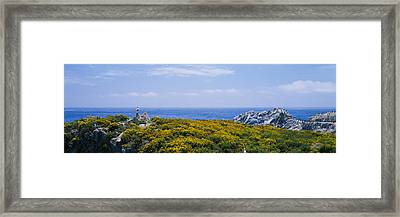 Sea Gulls Perching On Rocks, Point Framed Print by Panoramic Images