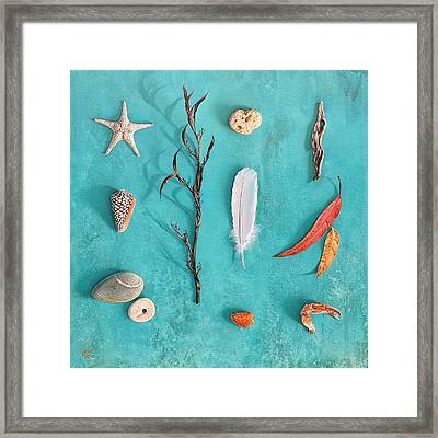 Sea, Land And Sky Framed Print by Elena Kolotusha