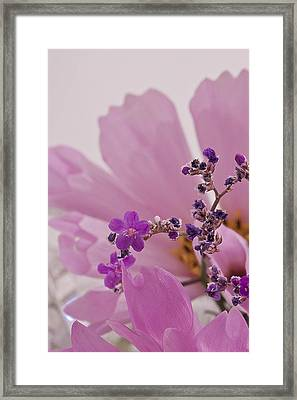 Framed Print featuring the photograph Sea Lavender Macro  by Sandra Foster