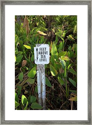 Sea Level Indicator Framed Print by Jim West