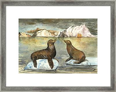 Sea Lions Framed Print by Juan  Bosco