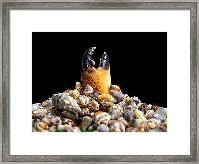Sea Monument Framed Print by Sinisa Botas