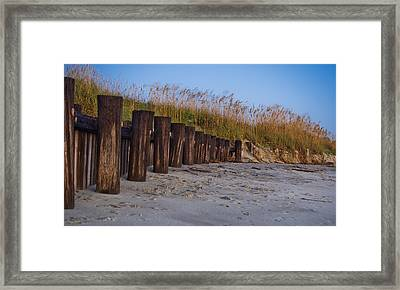 Sea Oats And Pilings Framed Print
