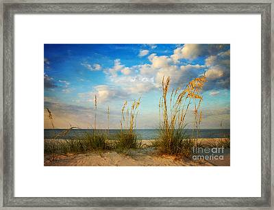 Sea Oats At Sunset Framed Print