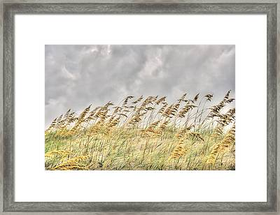 Bend Don't Break Framed Print