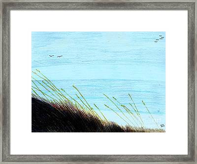 Framed Print featuring the drawing Sea Oats In The Wind Drawing by D Hackett