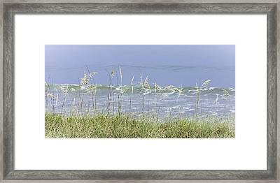 Sea Oats Panorama 1 Framed Print by Karen Stephenson